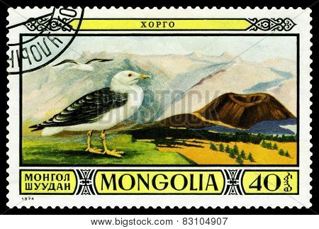 Vintage  Postage Stamp. Great Black- Backed Gull.