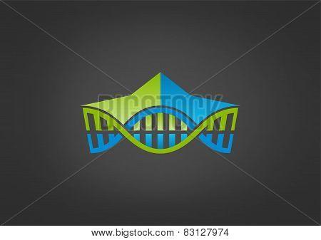 DNA center vector logo