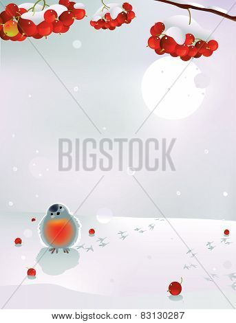 Bullfinch and berries in winter