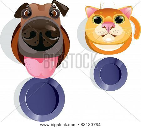 Cat, dog, food bowls