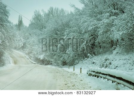 Snowy Country Road In Woods
