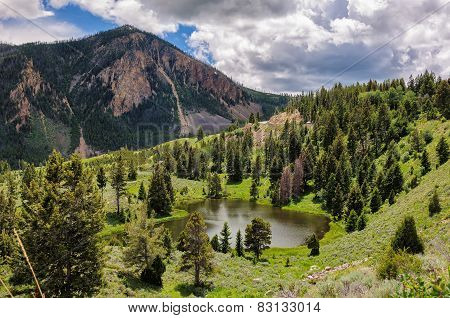 Mountain lake in an environment of trees in Yellowstone national park USA