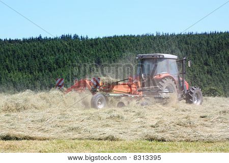 Agriculture Raking Hay