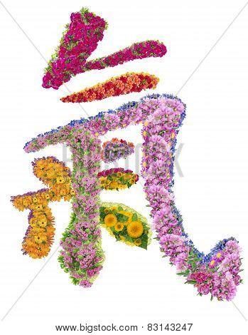 Chinese Hieroglyph Life