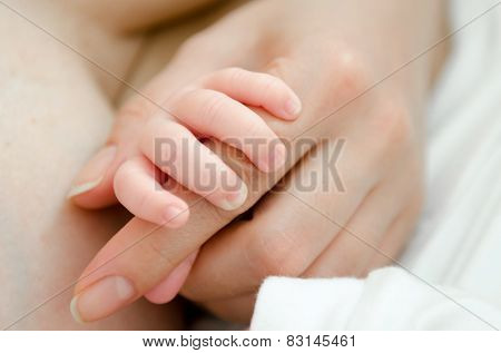 A newborn child's hand holding its mother finger