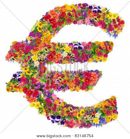 Euro Sign From  Summer Flowers