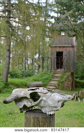 Animal Skull In Front Of Wooden Tower