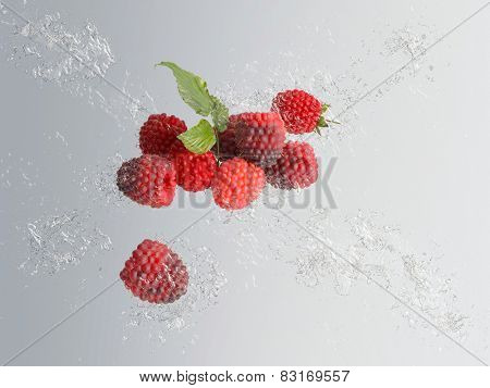 Delicious ripe red raspberries with a single fruit and group of fruit with a green leaf behind with water splash and bubble effect over a graduated grey background