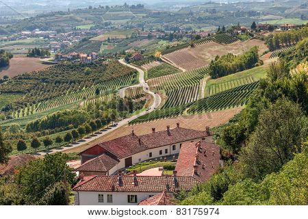 View of rural houses, green vineyards and road in Piedmont, Northern Italy.