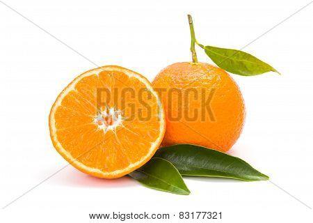 Mandarin (satsuma Or Tangerine)