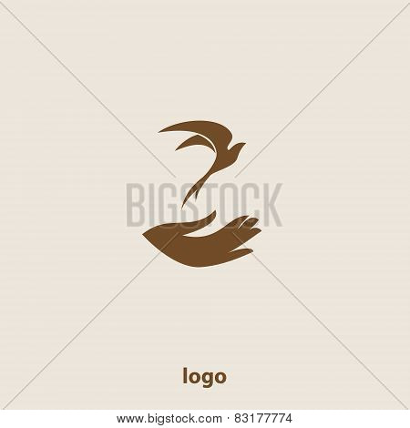 Swallow bird abstract vector logo design template.