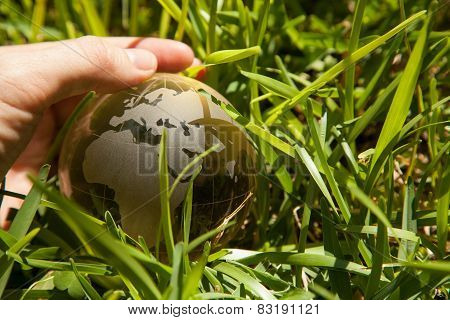 Glass globe or earth in green grass showing eco concept