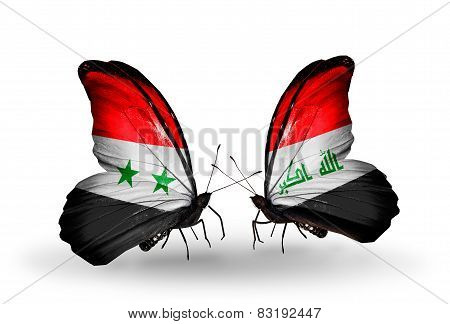Two Butterflies With Flags On Wings As Symbol Of Relations Syria And  Iraq