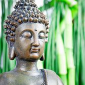 stock photo of cult  - buddha statue close up with green bamboo background - JPG