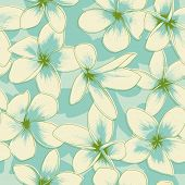 foto of frangipani  - Blue floral seamless pattern with frangipani - JPG