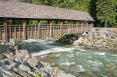 image of covered bridge  - Wooden covered bridge across the river in Whistler - JPG
