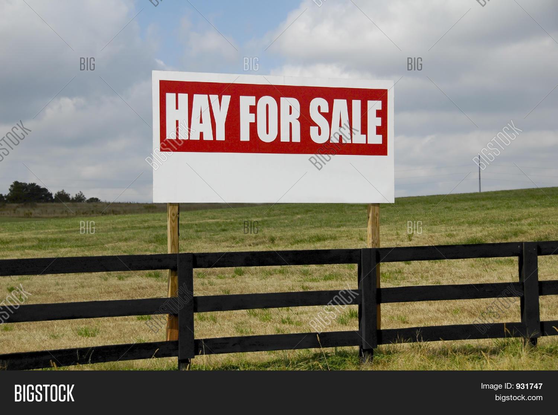 sign hay sale image photo bigstock. Black Bedroom Furniture Sets. Home Design Ideas