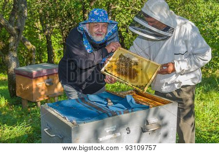 Pair of Ukrainian bee-keepers at work place