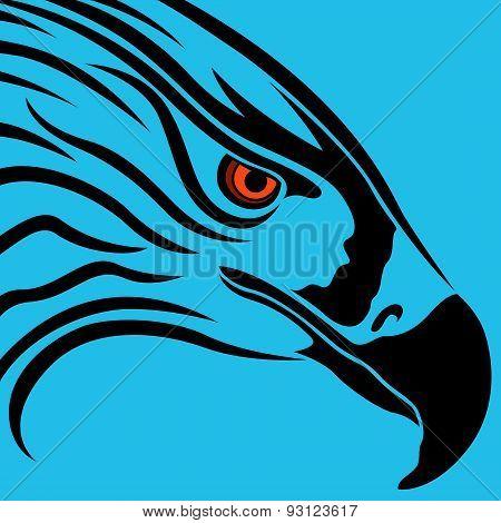 Head Of Eagle Over Blue