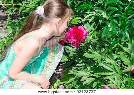 The Child The Girl Smells A Flower A Peony