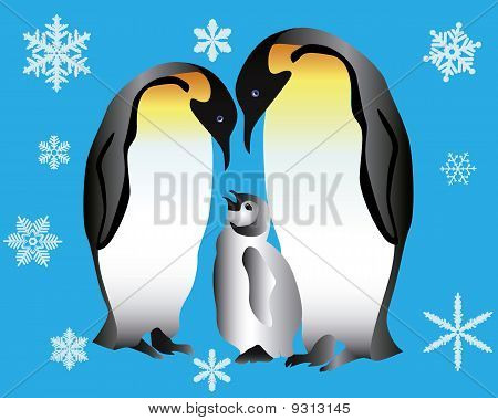 Two penguins and their cub