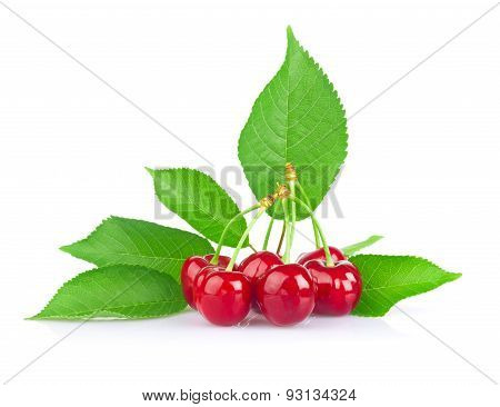 Ripe Juicy Cherry With Green Leaf