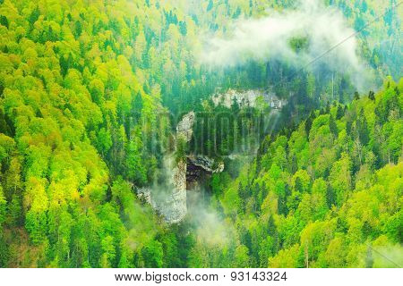 Deep Canyon And Mountain Forest.