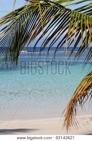 France, Sainte Anne In Guadeloupe