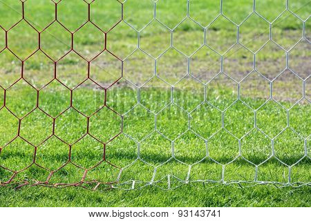 Football net on green grass background
