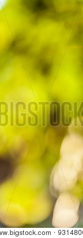 Abstract Background Summer Season