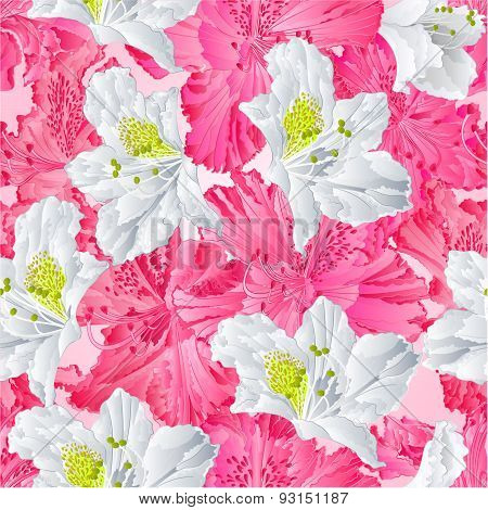 Seamless Texture  Pink And White Rhododendron Vector