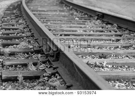 The Long Rail Way