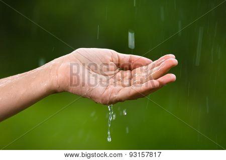 Hand Of Women Catching Rain Drops