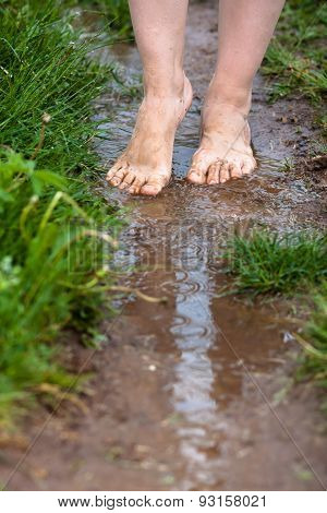 Feet Of A Young Woman Walking Barefoot Through The Puddles After