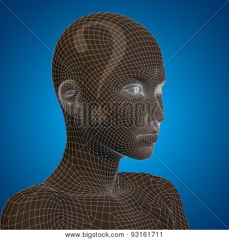 Concept or conceptual 3D wireframe human female question ask head on blue background