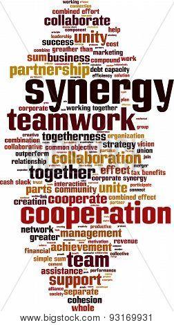 Synergy Word Cloud