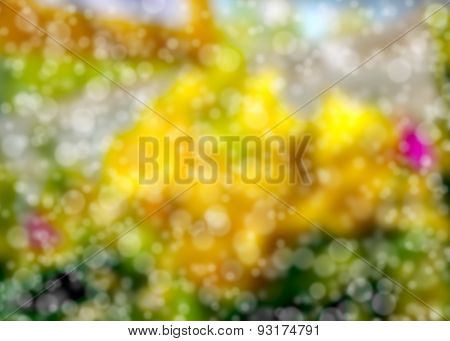 Soft And Blurred Bokeh Background