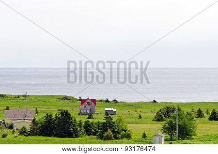 Newfoundland Coast