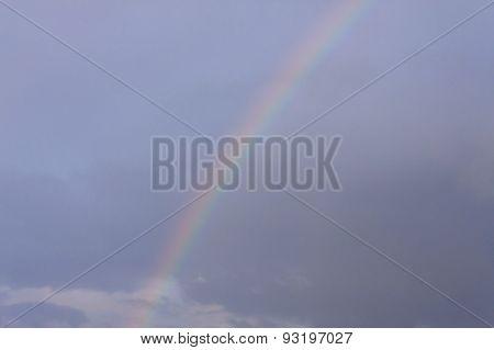 Rainbow In A Sky
