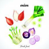 picture of leek  - Fresh organic food - JPG