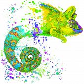 stock photo of chameleon  - Chameleon T - JPG