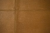 stock photo of stitches  - natural design of cowhide stitched together creating a nice pattern - JPG