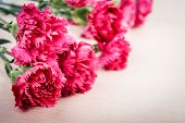 image of carnation  - Bunch of fresh pink carnations on wooden background - JPG