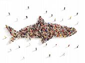 pic of great white shark  - Large group of people in the shape of a shark on a white background - JPG