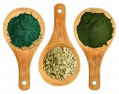 stock photo of chlorella  - spirulina - JPG