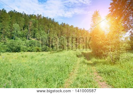 Beautiful Landscape Of A Summer Day In The  Reserve Samarskaya Luka