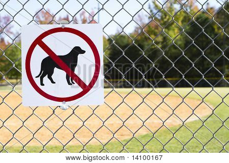 No Dogs Allowed Inside Sign