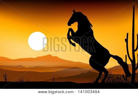 beauty Horse silhouette jumping with sunset background