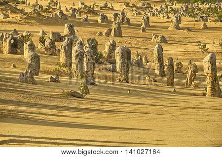 Pinnacles in the desert of Nambung National Park Western Australia Australia