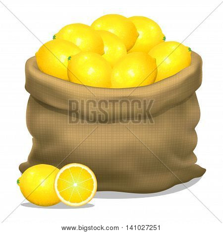 Illustration of a sack of lemons on a white background. Vector icon